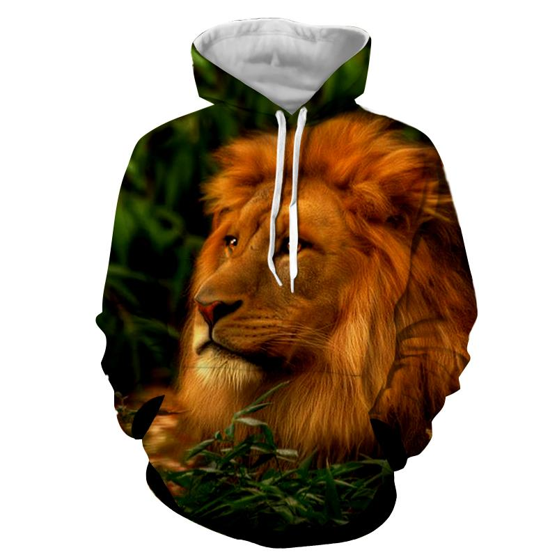 Lion - Lion 3D - Lion Hoodies